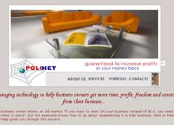 Polinet 2