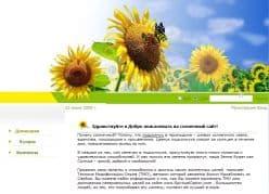 Sunflower Coach