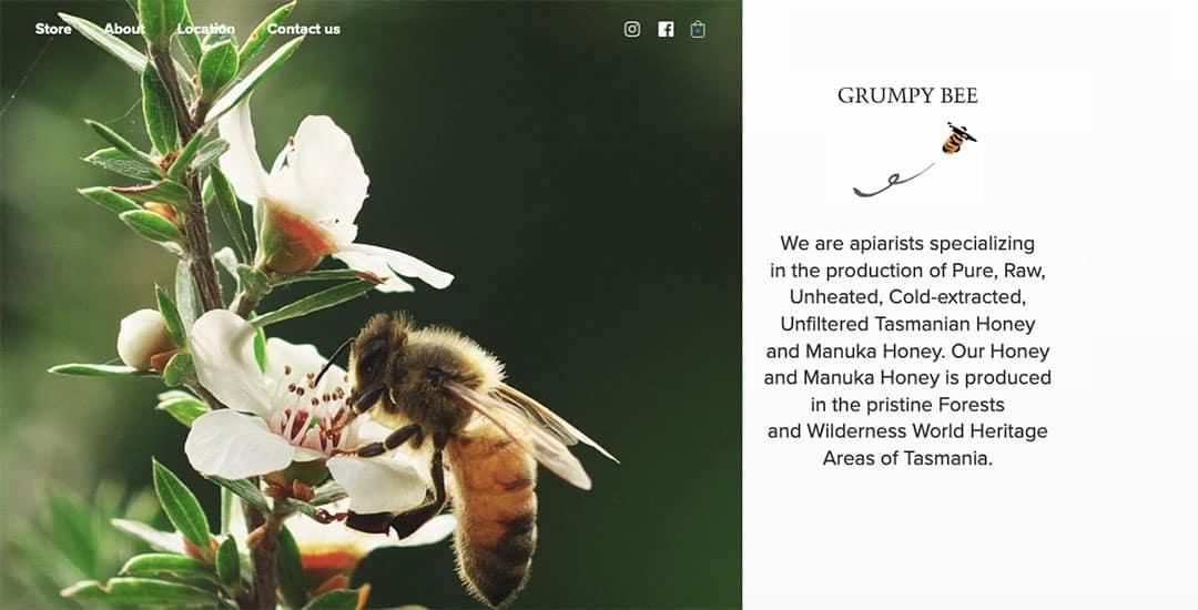 Grumpy Bee